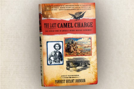 Book cover of The Last Camel Charge